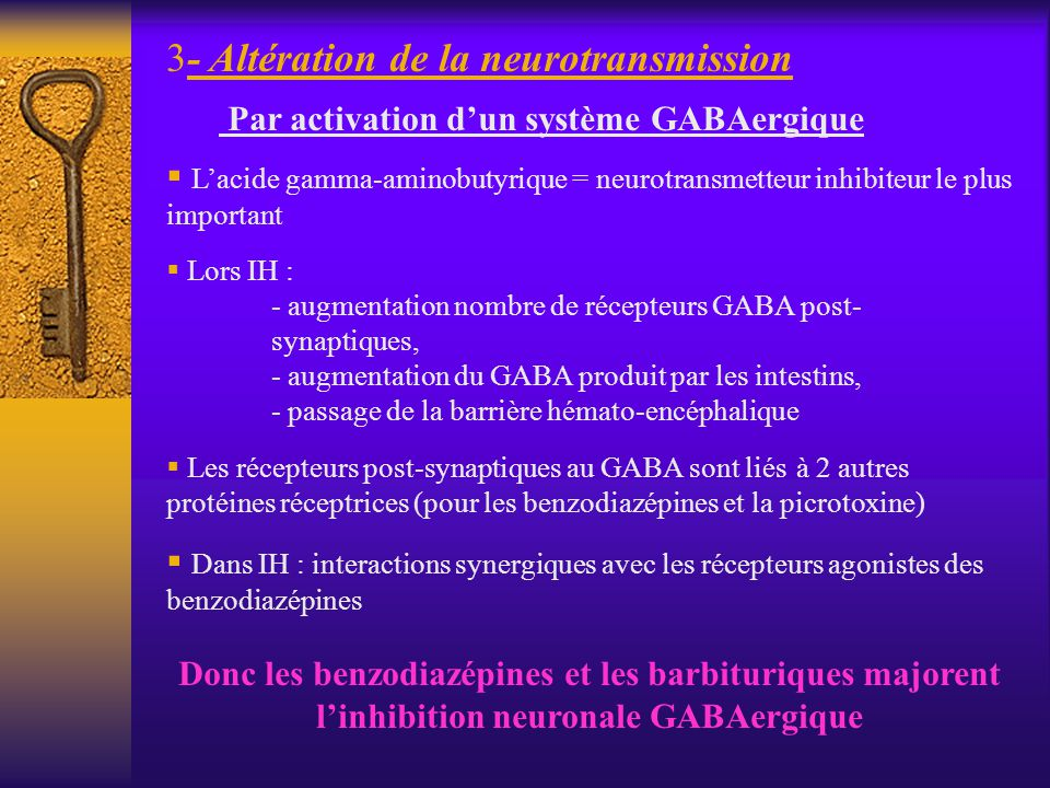 3- Altération de la neurotransmission Par activation dun système GABAergique Lacide gamma-aminobutyrique = neurotransmetteur inhibiteur le plus import