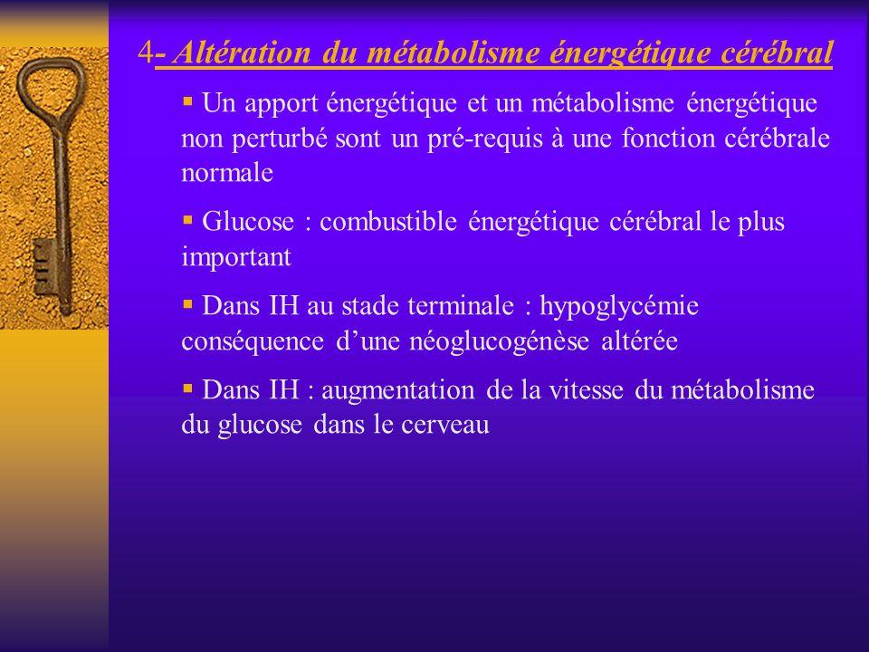 4- Altération du métabolisme énergétique cérébral Un apport énergétique et un métabolisme énergétique non perturbé sont un pré-requis à une fonction c