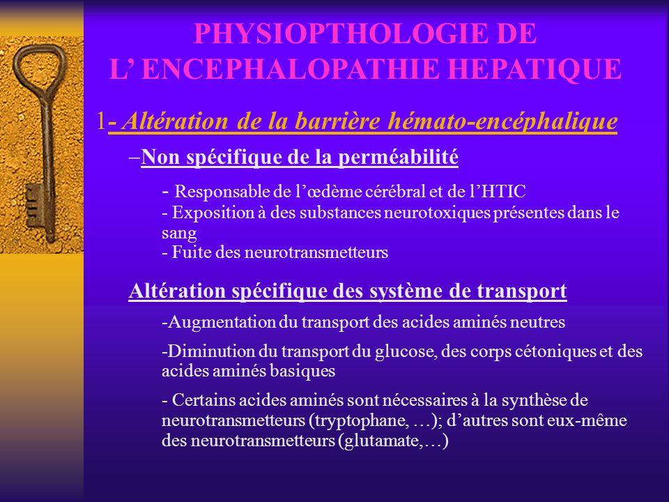 PHYSIOPTHOLOGIE DE L ENCEPHALOPATHIE HEPATIQUE 1- Altération de la barrière hémato-encéphalique Non spécifique de la perméabilité - Responsable de lœd