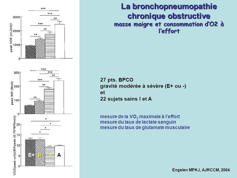 La bronchopneumopathie chronique obstructive masse maigre et consommation dO2 à leffort Engelen MPKJ, AJRCCM, 2004 AiE-E+ 27 pts. BPCO gravité modérée