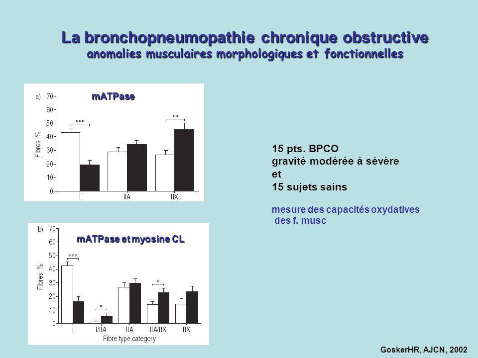 La bronchopneumopathie chronique obstructive anomalies musculaires morphologiques et fonctionnelles GoskerHR, AJCN, 2002 15 pts. BPCO gravité modérée