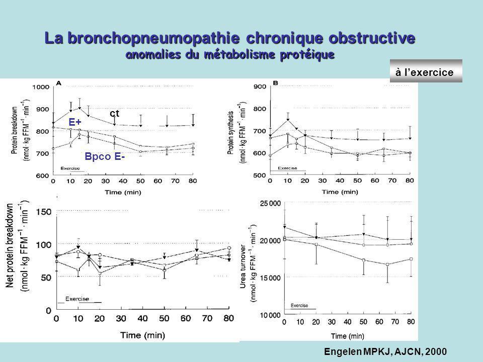 Engelen MPKJ, AJCN, 2000 La bronchopneumopathie chronique obstructive anomalies du métabolisme protéique ct Bpco E- E+ à lexercice