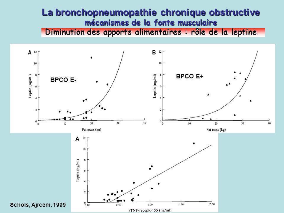 Schols, Ajrccm, 1999 La bronchopneumopathie chronique obstructive mécanismes de la fonte musculaire Diminution des apports alimentaires : rôle de la l