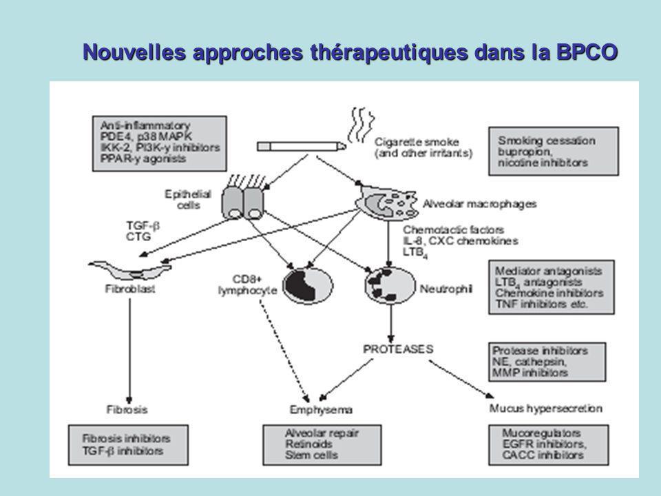 Nouvelles approches thérapeutiques dans la BPCO