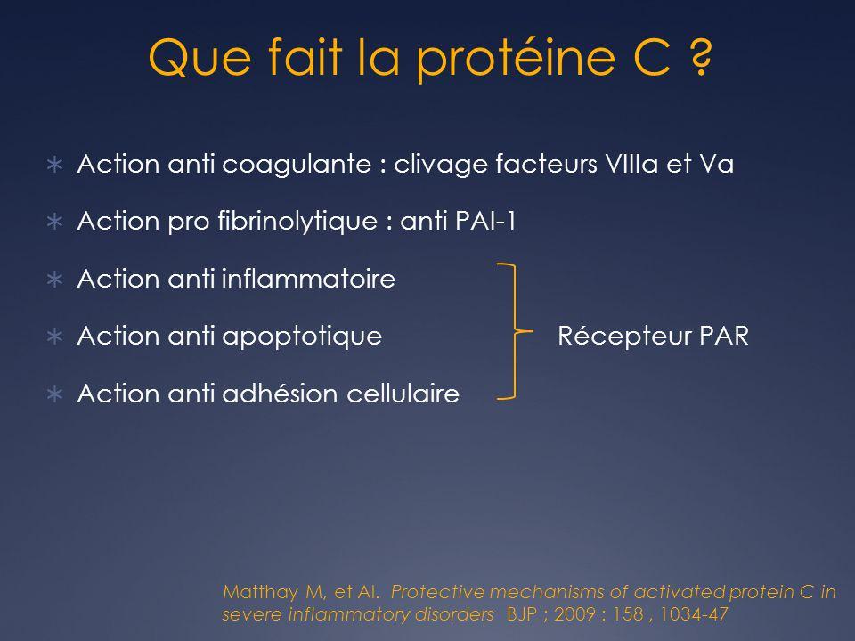 Que fait la protéine C .