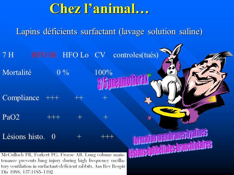 Chez lanimal… Lapins déficients surfactant (lavage solution saline) 7 H HFO Hi HFO Lo CV controles(tués) Mortalité 0 % 100% Compliance +++ ++ + PaO2 +