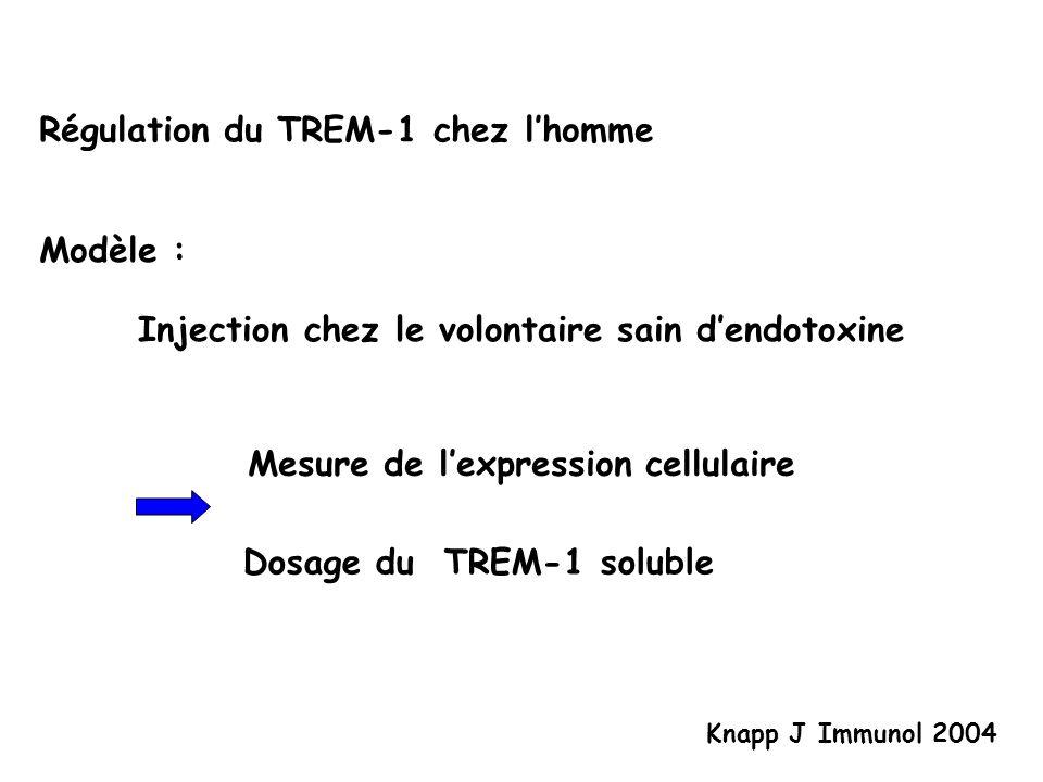 Résultats Endotoxinémie Expresion cellulaire (Monocyte, Macrophage) TREM-1 TREM-1 soluble plasmatique Cinétique rapide (6h) Knapp J Immunol 2004