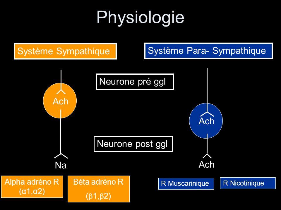 Physiologie Système Sympathique Système Para- Sympathique Alpha adréno R (α1,α2) Béta adréno R ( 1, 2) Ach Na Neurone pré ggl Neurone post ggl Ach R Muscarinique R Nicotinique