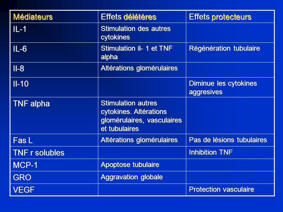 Médiateurs Effets délétères Effets protecteurs IL-1 Stimulation des autres cytokines IL-6 Stimulation il- 1 et TNF alpha Régénération tubulaire Il-8 A