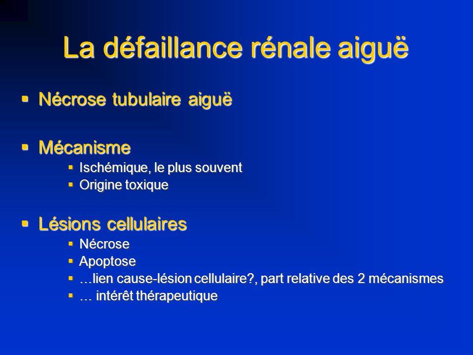 Exemples Gurkan, Am J PhysiolLung Cell Mol Physiol 2003 Gurkan, Am J PhysiolLung Cell Mol Physiol 2003 Modèle animal d agression pulmonaire Modèle animal d agression pulmonaire Élévation IL-6: poumon, foie rein Élévation IL-6: poumon, foie rein …mais pas d étude pour IL-6 pl et fonction rénale …mais pas d étude pour IL-6 pl et fonction rénale Imai, JAMA 2003 Imai, JAMA 2003 Association VM agressive avec lésion histologiques rénales et aggravation de la fonction rénale Association VM agressive avec lésion histologiques rénales et aggravation de la fonction rénale Hypothèse Fas L responsable de l apoptose Hypothèse Fas L responsable de l apoptose Ranieri, JAMA, 1999 Ranieri, JAMA, 1999 Réponse inflammatoire dépend des modalités de la VM Réponse inflammatoire dépend des modalités de la VM Quantification des cytokines plasma et LBA Quantification des cytokines plasma et LBA Corrélation taux IL-6 et degré d insuffisance rénale Corrélation taux IL-6 et degré d insuffisance rénale