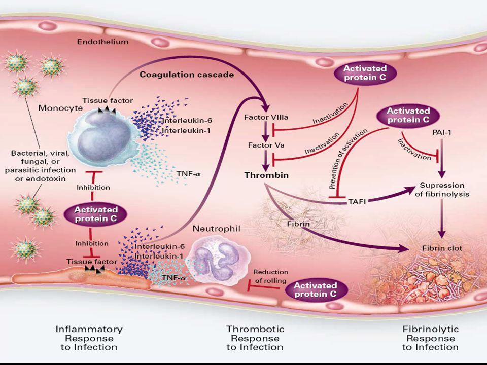 Conclusion NON pas de place systématique de la Protéine C activée dans le sepsis en 2009 Probable potentiel Poursuivre les études avant de la rejeter totalement