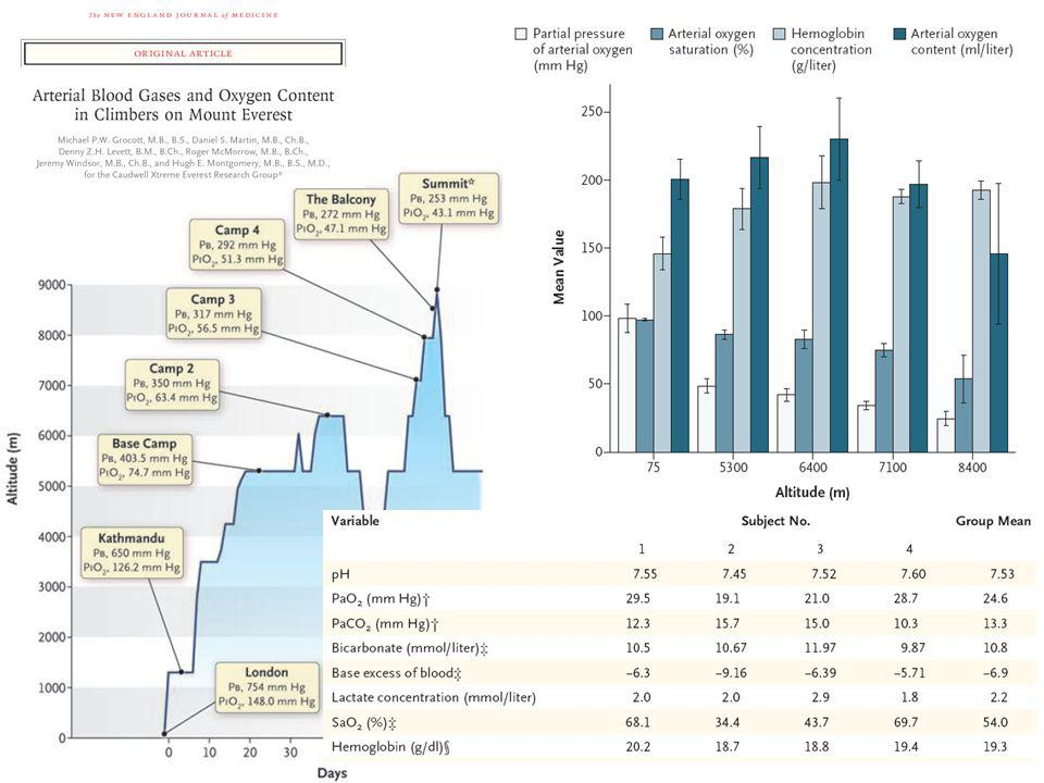 Optimisation Facteurs de mauvais pronostic à linclusion –analyse univariée PaCO 2 DVA avant arrivée Nb défaillances viscérales SAPS II réponse à loptimisation –analyse multivariée SAPS II réponse à loptimisation Guinard et al.