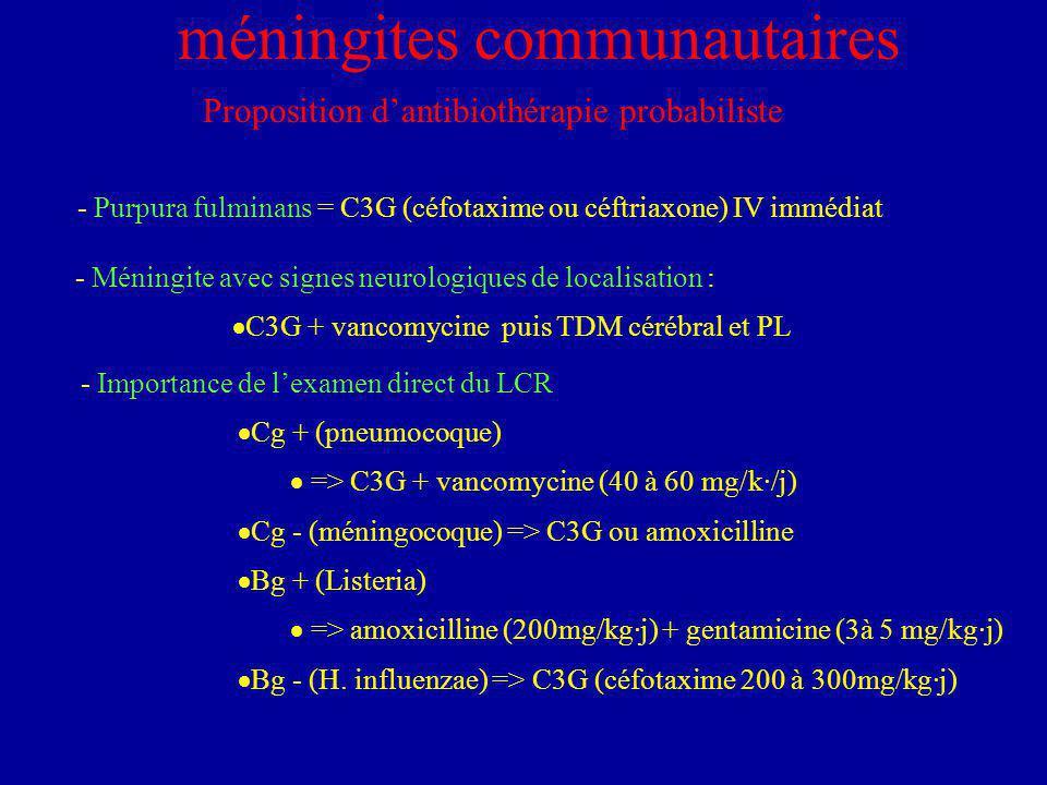 - Purpura fulminans = C3G (céfotaxime ou céftriaxone) IV immédiat méningites communautaires Proposition dantibiothérapie probabiliste - Méningite avec signes neurologiques de localisation : C3G + vancomycine puis TDM cérébral et PL - Importance de lexamen direct du LCR Cg + (pneumocoque) => C3G + vancomycine (40 à 60 mg/k·/j) Cg - (méningocoque) => C3G ou amoxicilline Bg + (Listeria) => amoxicilline (200mg/kg·j) + gentamicine (3à 5 mg/kg·j) Bg - (H.