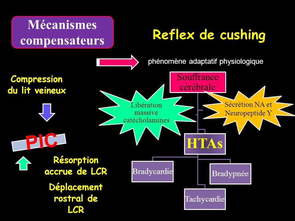 Déterminants physiologiques du DSC (Débit sanguin cérébral) Auto-régulation cérébrale - Couplage métabolique - Régulation en pression - Régulation par le CO 2 - Couplage métabolique - Régulation en pression - Régulation par le CO 2