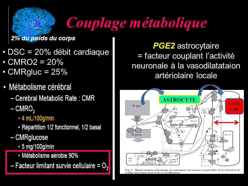 Couplage métabolique ASTROCYTE VSM Cell.
