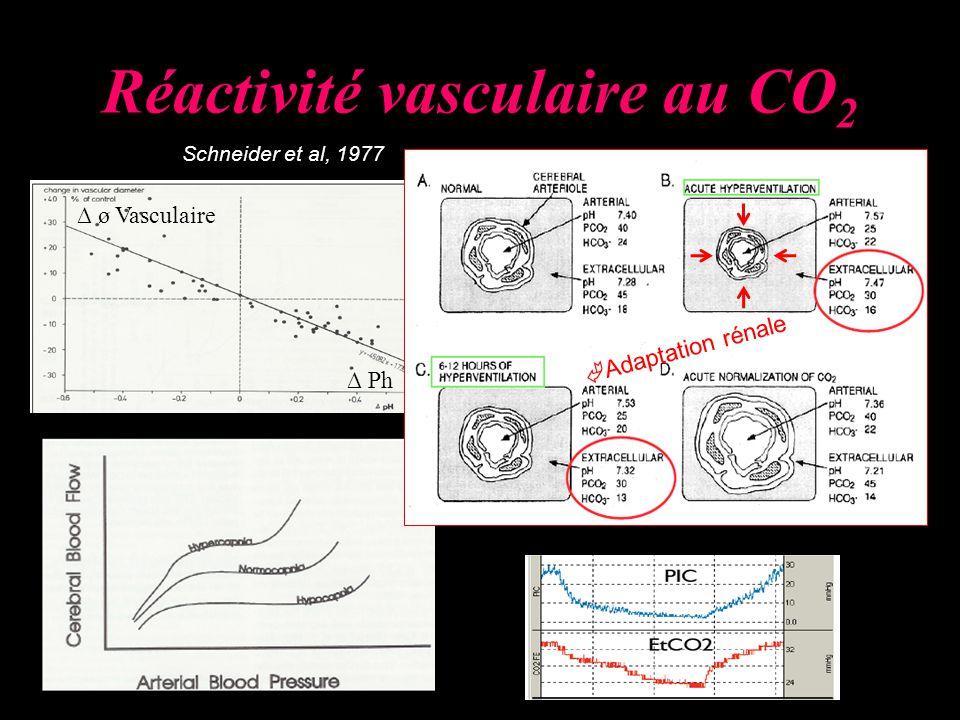 Réactivité vasculaire au CO 2 Schneider et al, 1977 Ph ø Vasculaire Adaptation rénale