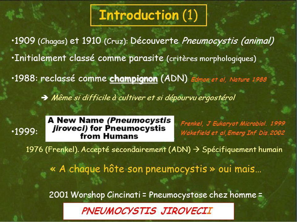 1909 (Chagas) et 1910 (Cruz): Découverte Pneumocystis (animal) Initialement classé comme parasite (critères morphologiques) champignon1988: reclassé comme champignon (ADN) Edman et al, Nature 1988 Même si difficile à cultiver et si dépourvu ergostérol 1999: Wakefield et al,Emerg Inf Dis.2002 1976 (Frenkel).