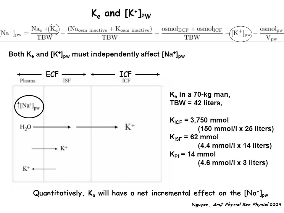 Both K e and [K + ] pw must independently affect [Na + ] pw ECFICF K e in a 70-kg man, TBW = 42 liters, K ICF = 3,750 mmol (150 mmol/l x 25 liters) K ISF = 62 mmol (4.4 mmol/l x 14 liters) K Pl = 14 mmol (4.6 mmol/l x 3 liters) Quantitatively, K e will have a net incremental effect on the [Na + ] pw K e and [K + ] PW Nguyen, AmJ Physiol Ren Physiol 2004