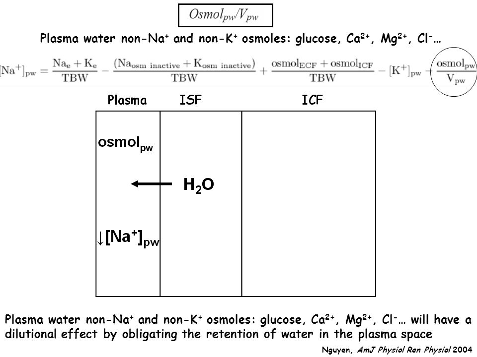Plasma water non-Na + and non-K + osmoles: glucose, Ca 2+, Mg 2+, Cl - … Plasma water non-Na + and non-K + osmoles: glucose, Ca 2+, Mg 2+, Cl - … will have a dilutional effect by obligating the retention of water in the plasma space Nguyen, AmJ Physiol Ren Physiol 2004
