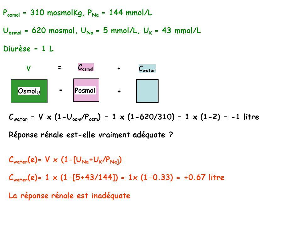 P osmol = 310 mosmolKg, P Na = 144 mmol/L U osmol = 620 mosmol, U Na = 5 mmol/L, U K = 43 mmol/L Diurèse = 1 L Osmol U V C water = V x (1-U osm /P osm