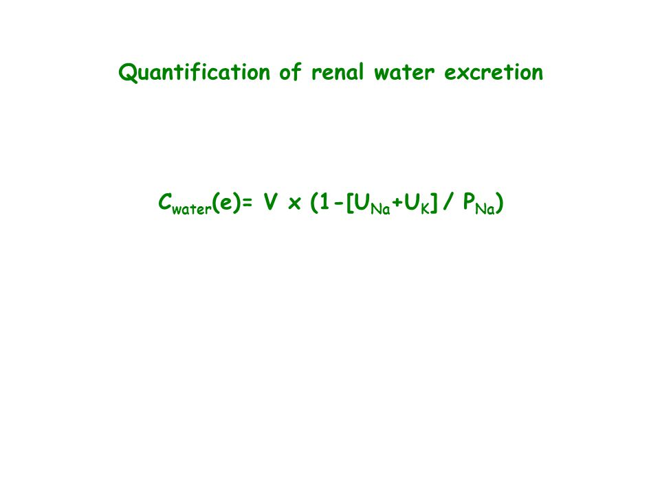 Quantification of renal water excretion C water (e)= V x (1-[U Na +U K ] / P Na )