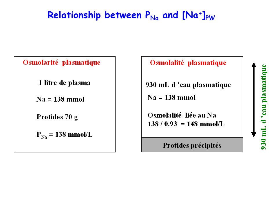 Relationship between P Na and [Na + ] PW