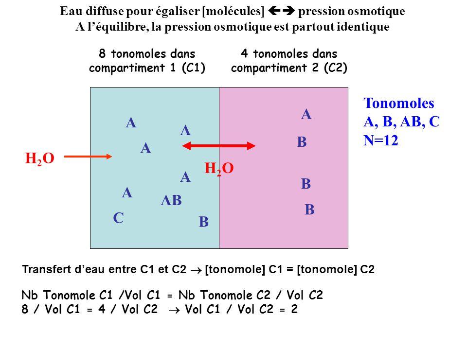 Eau diffuse pour égaliser [molécules] A léquilibre, la pression osmotique est partout identique A B B B A AB A B C A A A H2OH2O 4 tonomoles / unité de volume Urée N=12 Urée Osmolalité = 8 / unité de volume