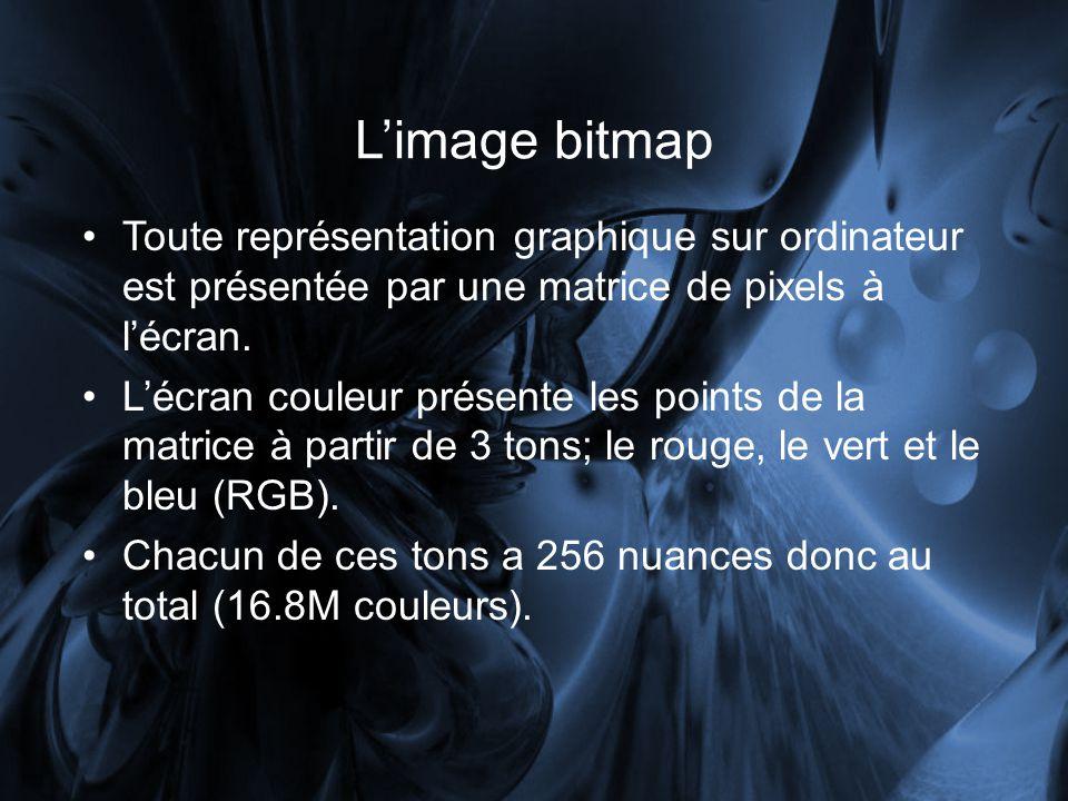 Limage bitmap Toute représentation graphique sur ordinateur est présentée par une matrice de pixels à lécran.