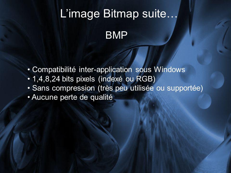 Limage Bitmap suite… BMP Compatibilité inter-application sous Windows 1,4,8,24 bits pixels (indexé ou RGB) Sans compression (très peu utilisée ou supportée) Aucune perte de qualité