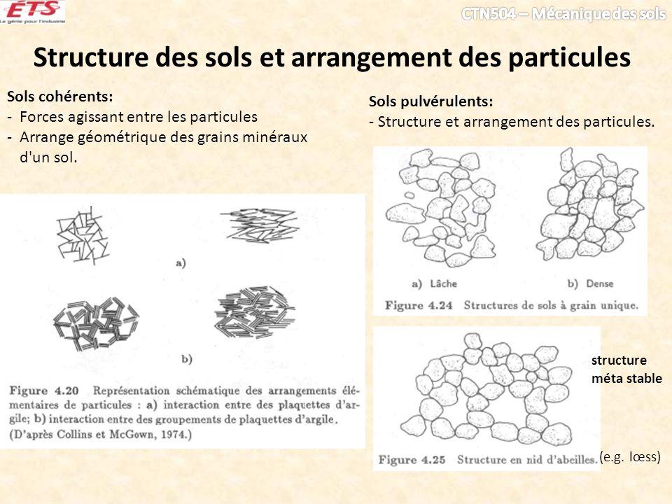 Structure des sols et arrangement des particules Sols cohérents: - Forces agissant entre les particules - Arrange géométrique des grains minéraux d'un