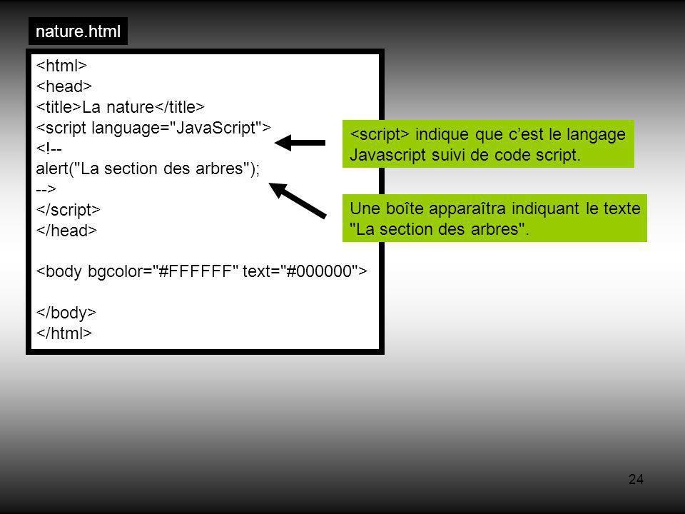 24 La nature <!-- alert( La section des arbres ); --> nature.html indique que cest le langage Javascript suivi de code script.
