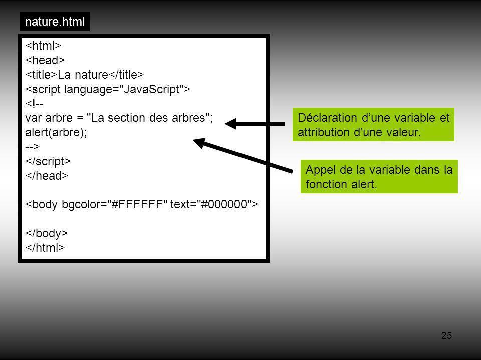 25 La nature <!-- var arbre = La section des arbres ; alert(arbre); --> nature.html Déclaration dune variable et attribution dune valeur.