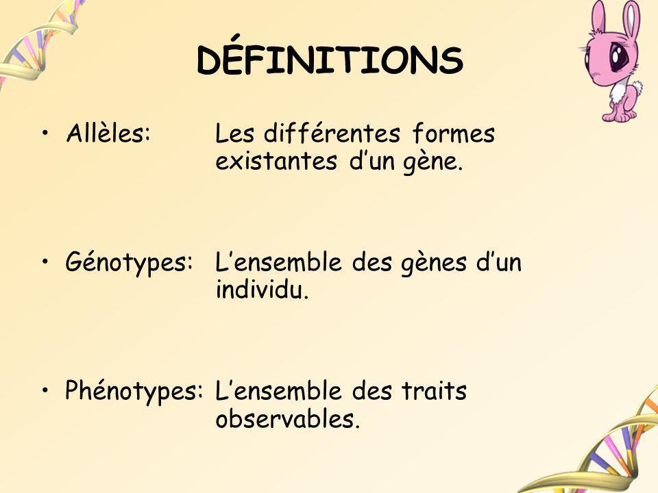 DÉFINITIONS Allèles: Les différentes formes existantes dun gène. Génotypes:Lensemble des gènes dun individu. Phénotypes:Lensemble des traits observabl