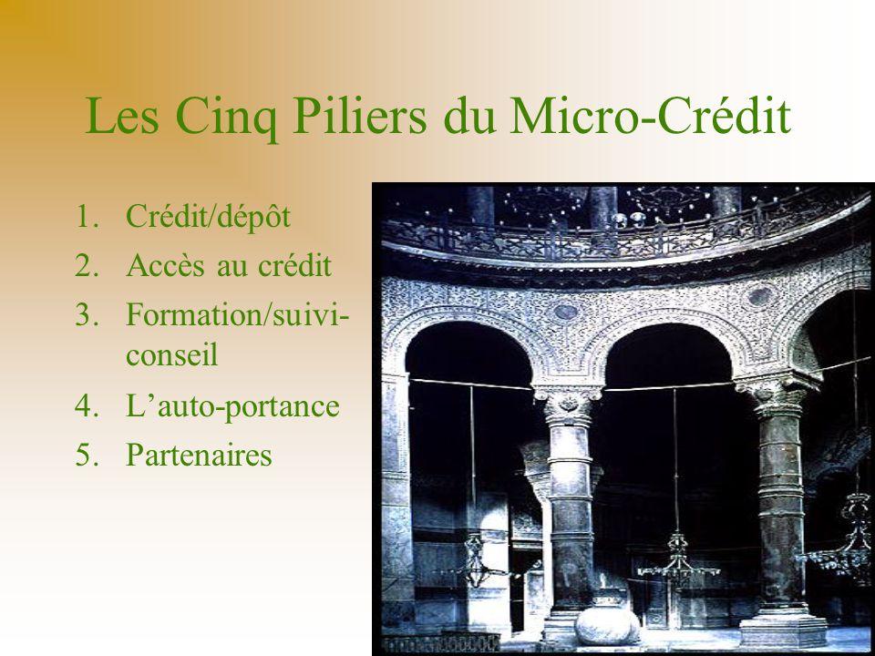 Les Cinq Piliers du Micro-Crédit 1.Crédit/dépôt 2.