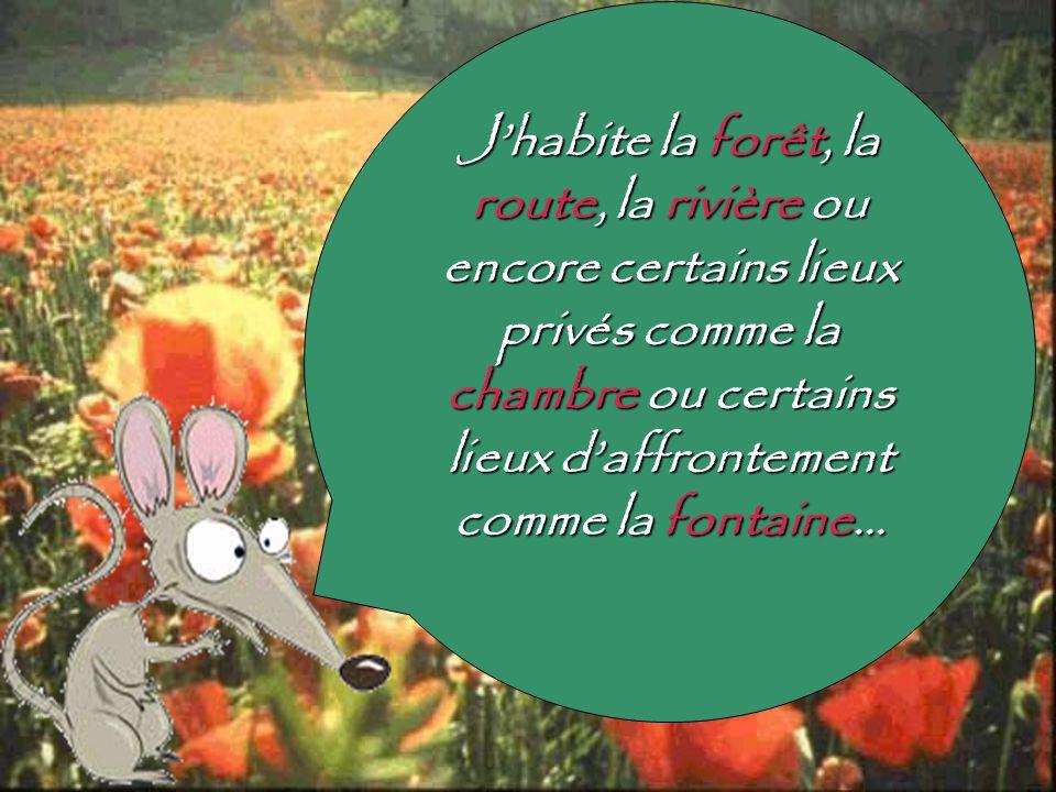 Amélie Pronovost Réalisation: UQAM, Programme PCPES, FPE7650-20,18 octobre 2005 Chargée de cours: Monique Dugal Auxiliaires: Simon-Pierre Bosset et Philipe Lampron Sources: Site de la fable lue par Olivia BAUDOIN: http://www2.wheatonma.edu/Academic/AcademicDept/French/ViveVoix/Resources/r atdeville.html http://www2.wheatonma.edu/Academic/AcademicDept/French/ViveVoix/Resources/r atdeville.htmlAnthologie: Favreau, Francis et Nicole Simard.