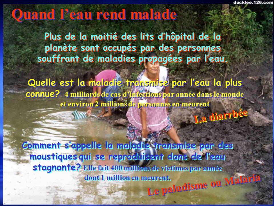 Les québécois consomment en moyenne 800 litres deau par jour Dans les pays en développement on parle denviron 15 litres par jour par habitants D a n s l e s p a y s e n d é v e l o p p e m e n t o n p a r l e d e n v i r o n 1 5 l i t r e s p a r j o u r p a r h a b i t a n t s 1350 litres deau par personne sont filtrés quotidiennement à Montréal.