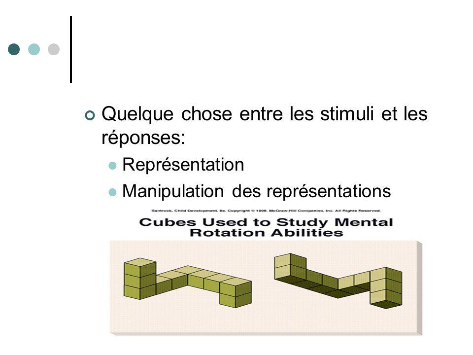 Quelque chose entre les stimuli et les réponses: Représentation Manipulation des représentations
