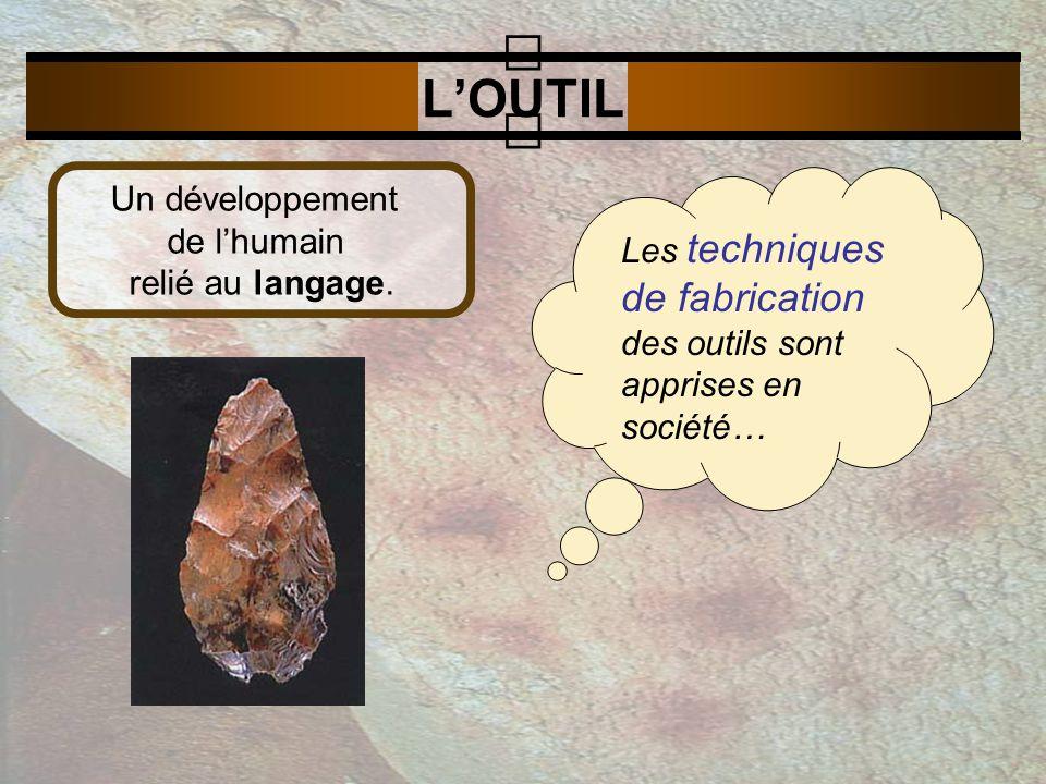 LOUTIL Les techniques de fabrication des outils sont apprises en société… Un développement de lhumain relié au langage.