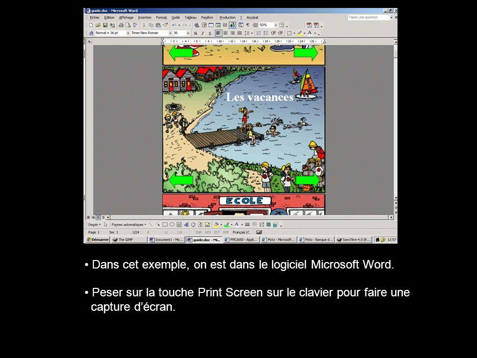 Dans cet exemple, on est dans le logiciel Microsoft Word.