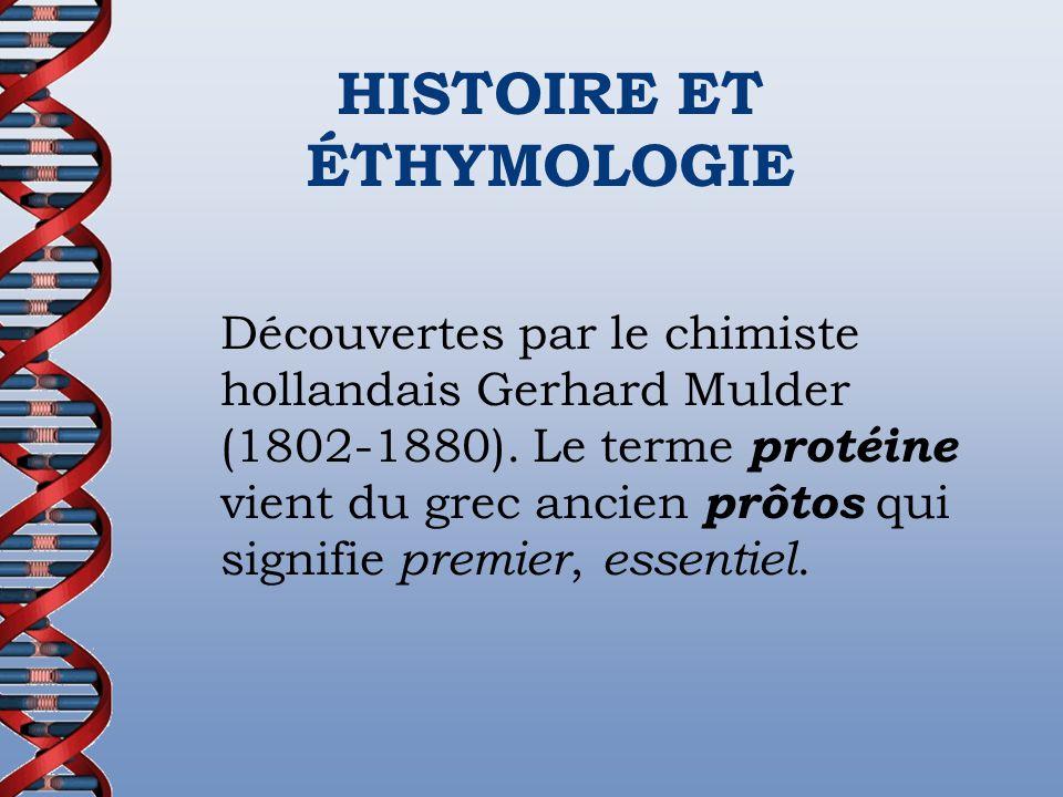 Découvertes par le chimiste hollandais Gerhard Mulder (1802-1880). Le terme protéine vient du grec ancien prôtos qui signifie premier, essentiel. HIST