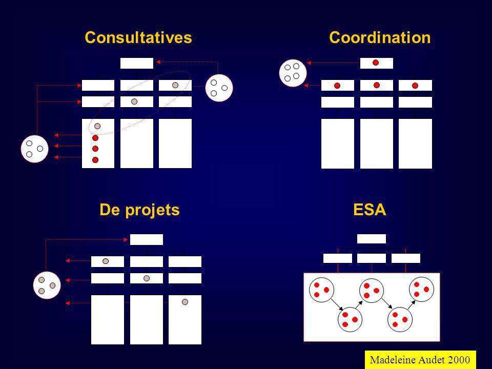 ConsultativesCoordination De projetsESA Madeleine Audet 2000
