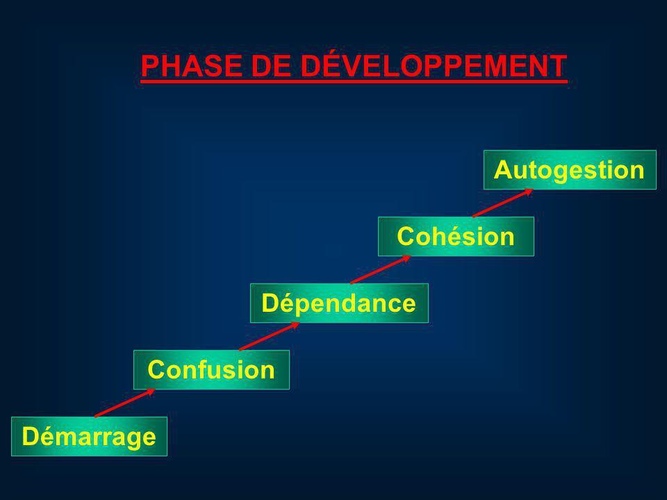 PHASE DE DÉVELOPPEMENT Démarrage Confusion Dépendance Cohésion Autogestion
