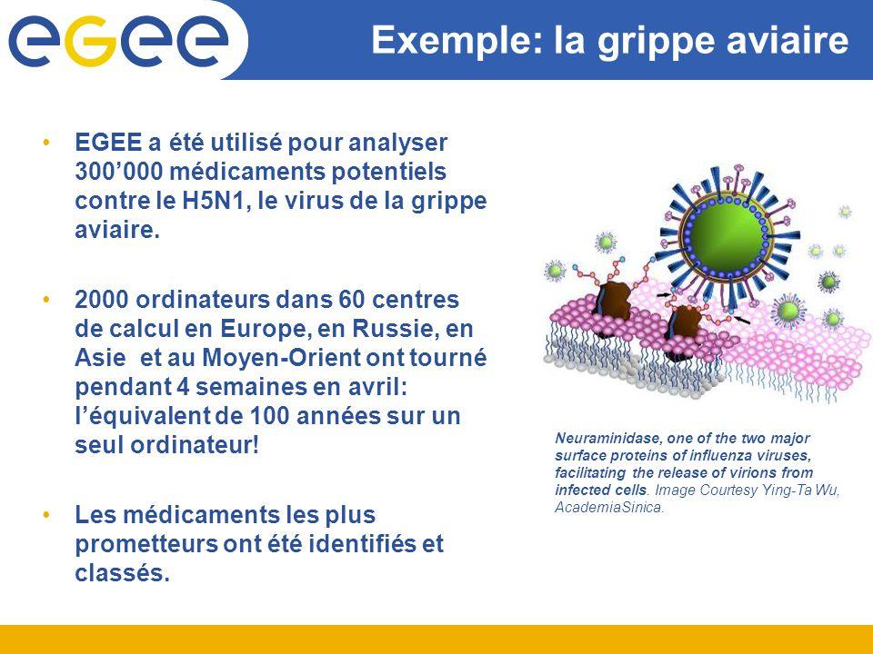 Exemple: la grippe aviaire EGEE a été utilisé pour analyser 300000 médicaments potentiels contre le H5N1, le virus de la grippe aviaire.