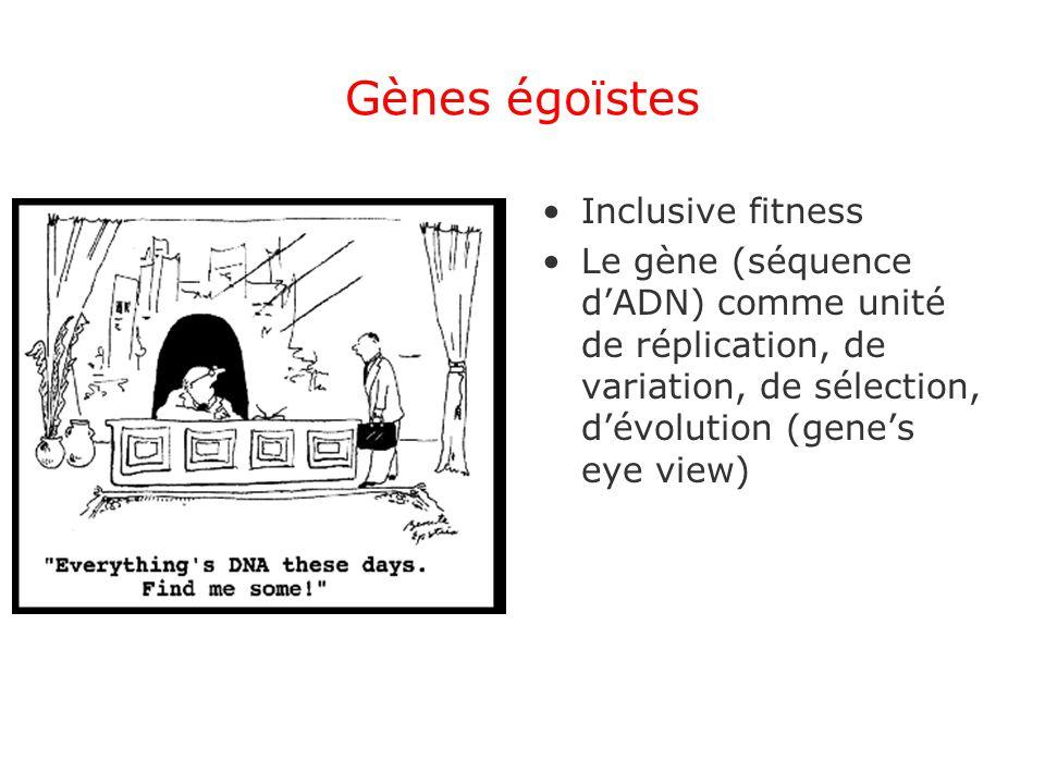 Gènes égoïstes Inclusive fitness Le gène (séquence dADN) comme unité de réplication, de variation, de sélection, dévolution (genes eye view)
