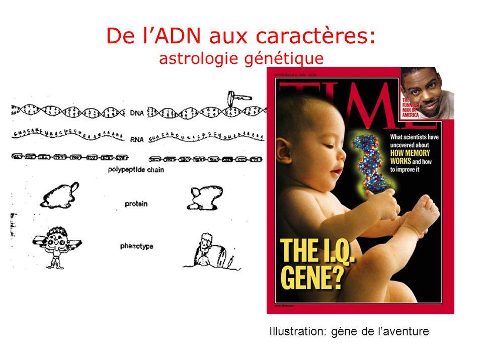 De lADN aux caractères: astrologie génétique Illustration: gène de laventure