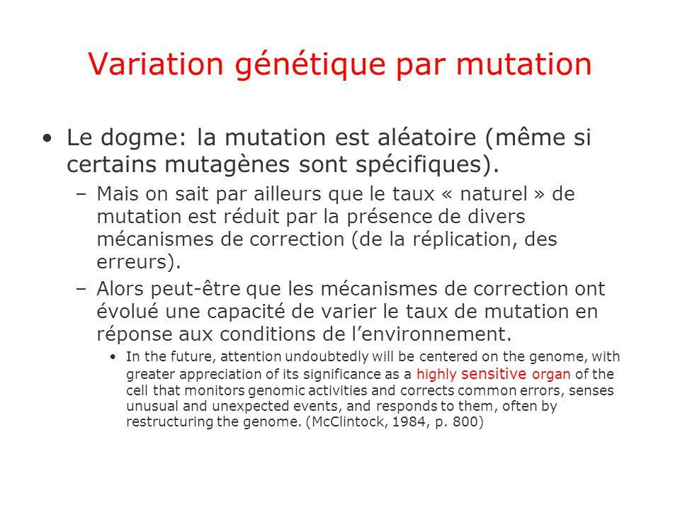 Variation génétique par mutation Le dogme: la mutation est aléatoire (même si certains mutagènes sont spécifiques). –Mais on sait par ailleurs que le
