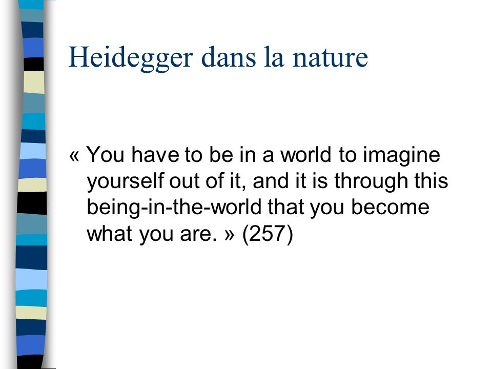 Heidegger dans la nature « You have to be in a world to imagine yourself out of it, and it is through this being-in-the-world that you become what you are.