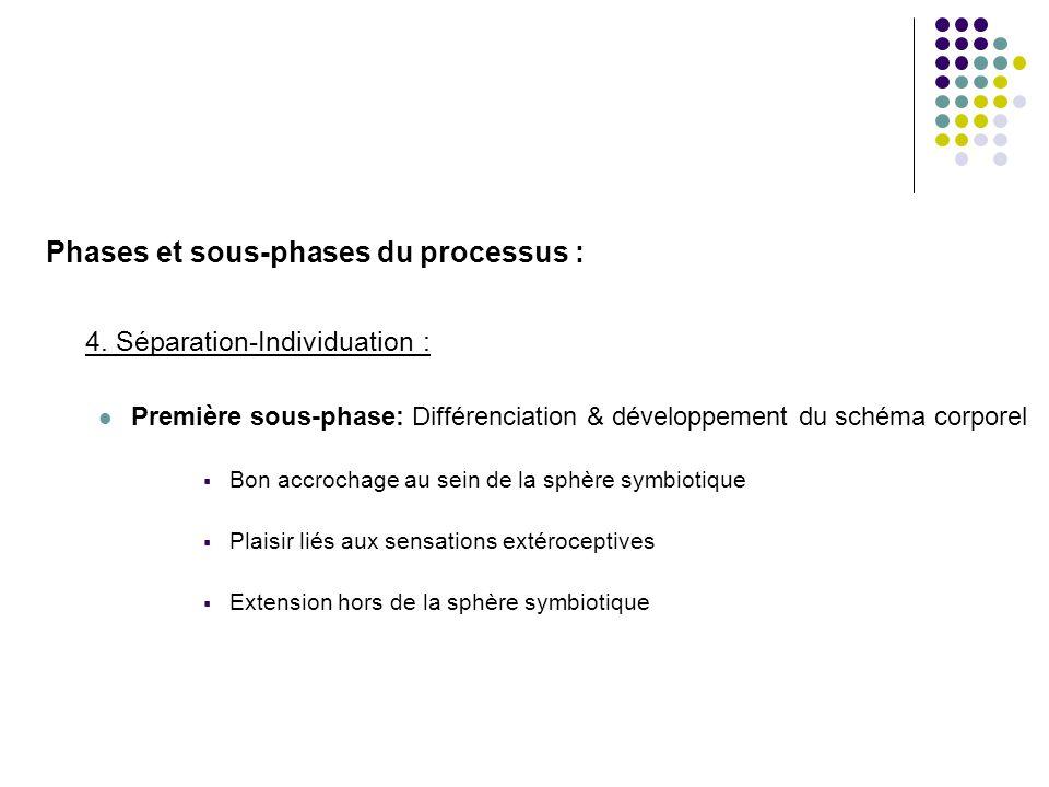 Phases et sous-phases du processus : 4. Séparation-Individuation : Première sous-phase: Différenciation & développement du schéma corporel Bon accroch