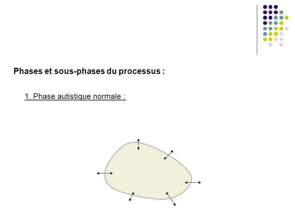 Phases et sous-phases du processus : 2. Phase pré-symbiotique : mère Je Non-Je