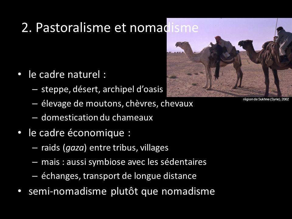 2. Pastoralisme et nomadisme le cadre naturel : – steppe, désert, archipel doasis – élevage de moutons, chèvres, chevaux – domestication du chameaux l